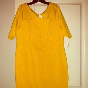 NWT LANE BRYANT MUSTARD GOLD SHEATH  DRESS SZ 16